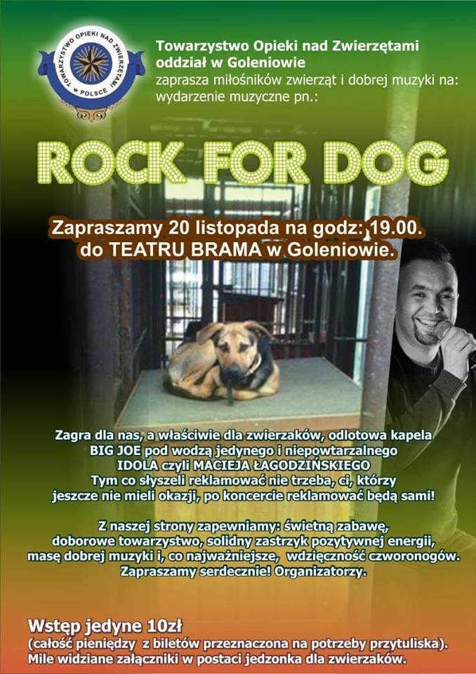Rock for Dog